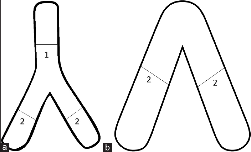 Figure 1: Pictorial representation illustrating the method for measuring the (a) inverted Y-shaped and (b) inverted V-shaped adrenal gland. Number 1 indicates the maximum width of the body of the adrenal gland; number 2 indicates the maximum width of the limbs of the adrenal gland